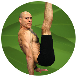 Arm Balances Course